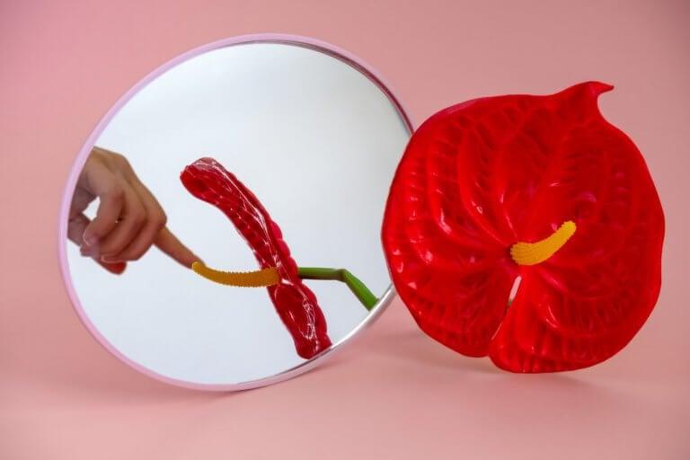 Dein Orgasmus im Spiegel der Wissenschaft
